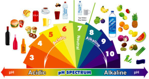 alkaline-diet-phchart